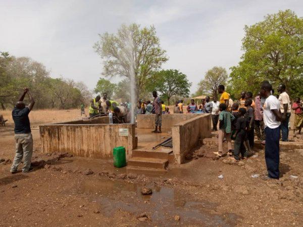 Forage Burkina