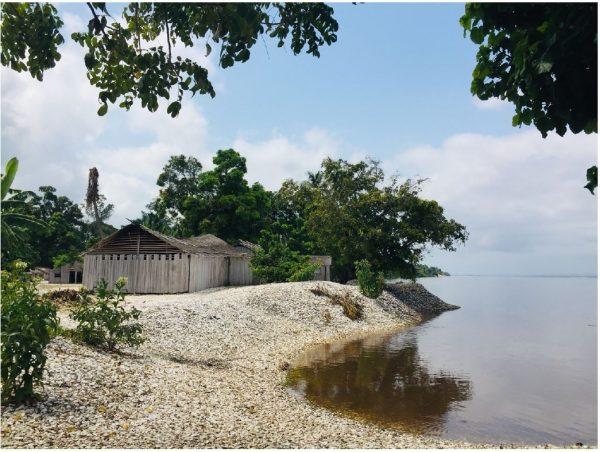 Parc Marin Mangroves